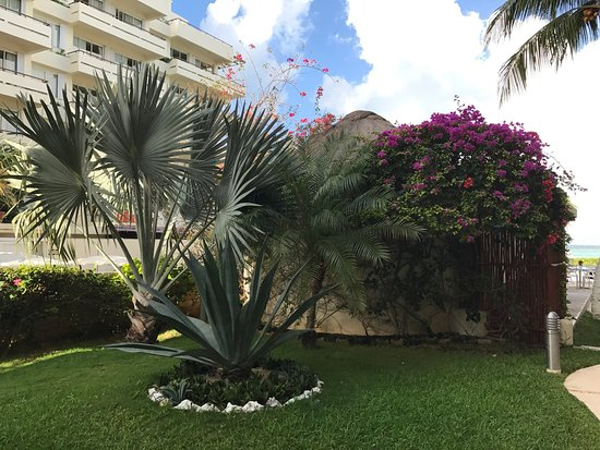 Ixchel Beach Hotel: photo1.jpg