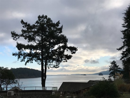 Mayne Island Resort: View from bistro patio