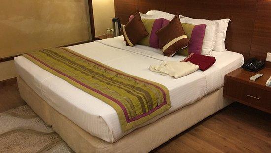 Baba Resorts Dharampur Resort Reviews Photos Rate