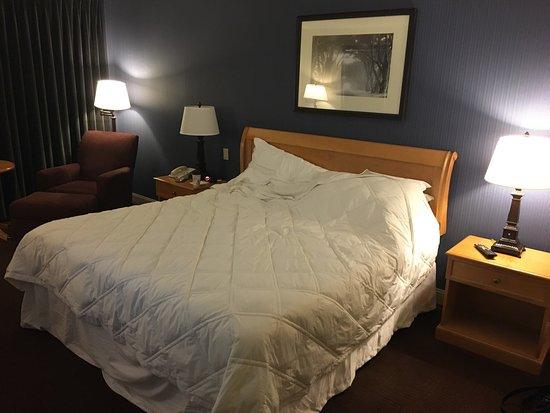 Sheraton Madison Hotel: photo1.jpg