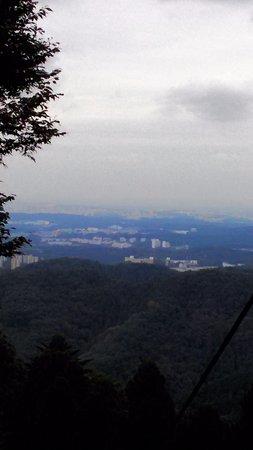 高尾山, 帰りのロープーウェイからの景色