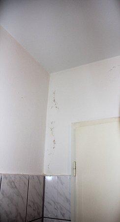 Feuchte Wände - Bild von Panorama Inn Hotel und Boardinghaus ...
