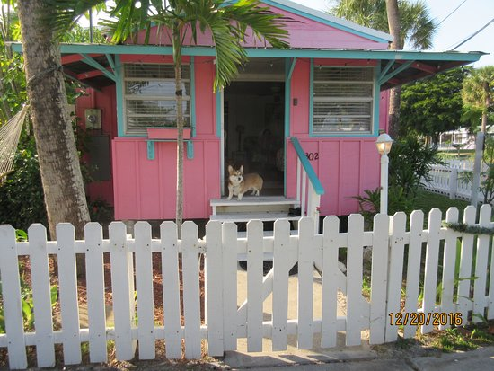 Beach Palms: Front door of cottage with Percival K Muzzle-Nudger on guard