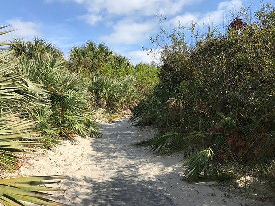 Resort on Cocoa Beach: Trail to beach