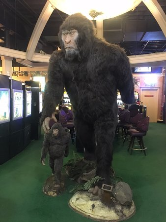 ‪Sasquatch Casino‬