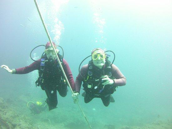 Dive Club Ocean Trek
