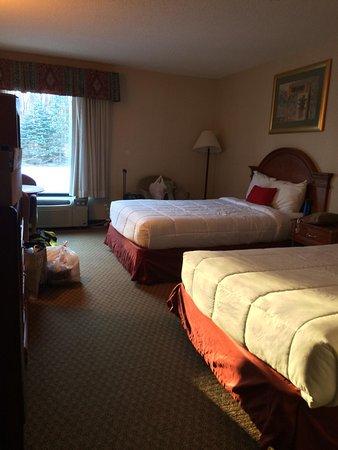 Hotel M, Mount Pocono: IMG_6734_large.jpg
