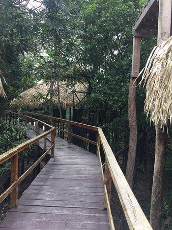 Juma Amazon Lodge: photo2.jpg
