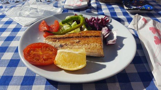 Beykoz, ตุรกี: Forelle
