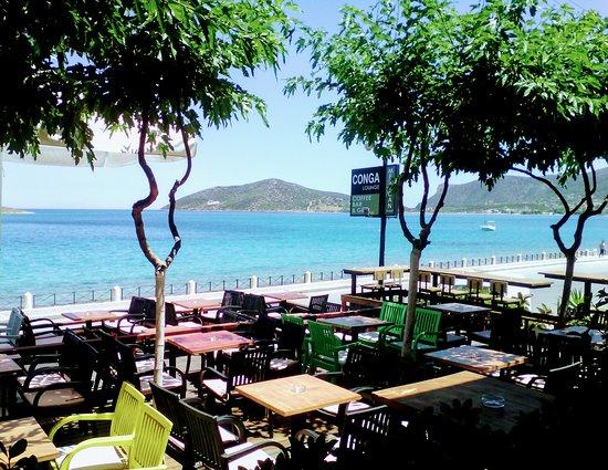 Conga S Restaurant Lounge