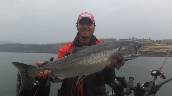 Rufus, ออริกอน: columbia river fishing oregon / washington walleye salmon sturgeon steelhead fishing