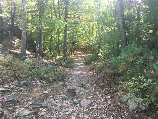Blue Hills Reservation: Hiking trail in the reservation.