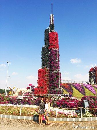 dubai miracle garden - Miracle Garden Dubai