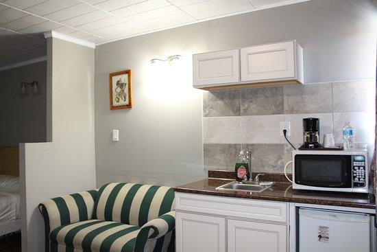 Ritz Inn Niagara & Wedding Chapel: Deluxe Kitchenette with Sofa Bed