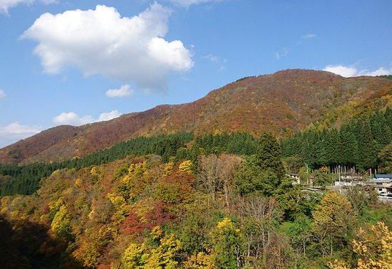Oyasukyo Daifunto: _20161106_041956_large.jpg