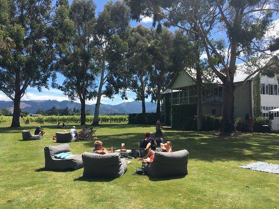 Rapaura, New Zealand: photo2.jpg