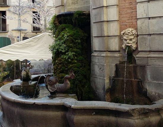 Fontana Dei Pesci Del Vanvitelli