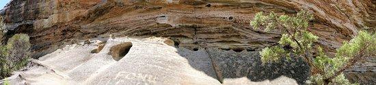 Blackheath, ออสเตรเลีย: Panorama of Windswept rock