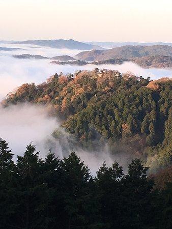 Bitchu Matsuyama Castle: 備中松山城