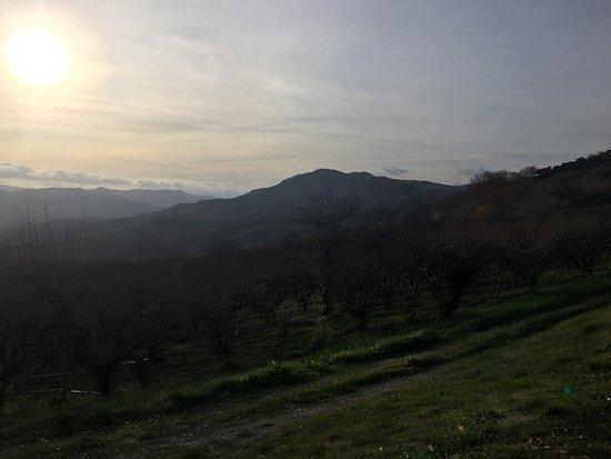 Chiaromonte, Italie : Panorama dal agriturismo