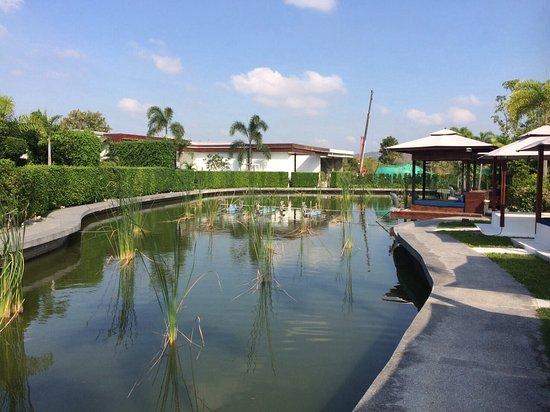 Lotus Villas & Resort Hua HIn: 戶外生態魚池