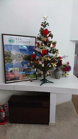 Hotel Cerulean Alpine: ロビーのクリスマスツリーです