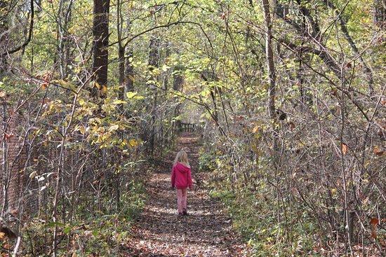 Wesselman Park Nature Center Evansville In