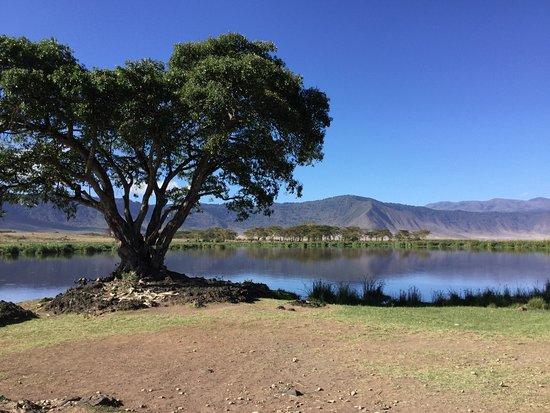 Arusha, Tansania: Lake inside Ngorongoro Crater.