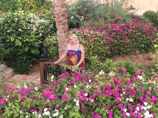 Four Seasons Resort Sharm El Sheikh: Идя с пляжа все время испытываешь удивление и восхищение окружающей красотой.
