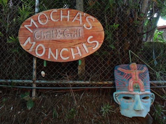 Mocha's Monchis : Mocha's