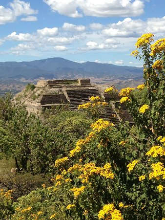 Monte Alban Tours : You don't want to miss the landscapes visible from Monte Alban