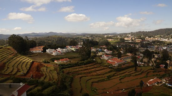 Ooty - Elk Hill, A Sterling Holidays Resort: view from the room