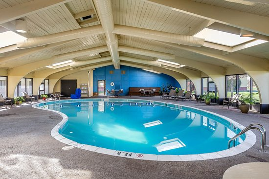 Quality Inn : A pool you can do laps in.