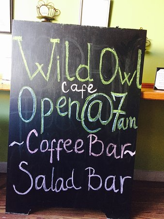 Norwich, Estado de Nueva York: Wild Owl Cafe