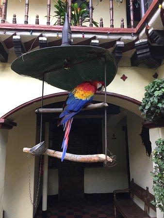 Mayan Inn 사진
