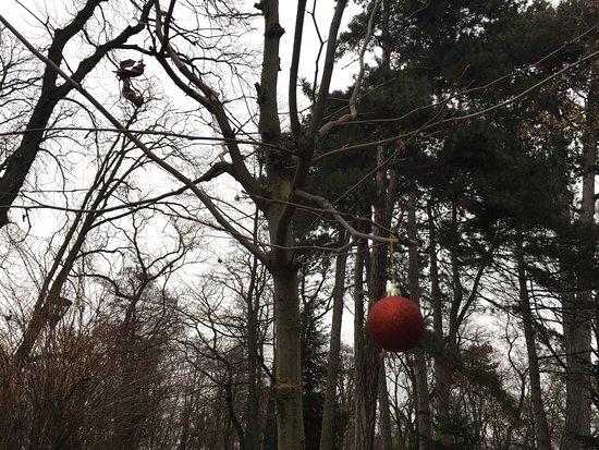Pezinok, سلوفاكيا: Zamocky park