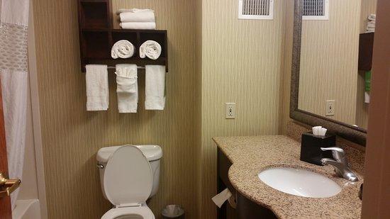 Hampton Inn & Suites East Lansing / Okemos Photo