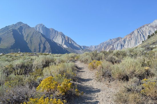 Convict Lake: View of the lake from the parking lot trail