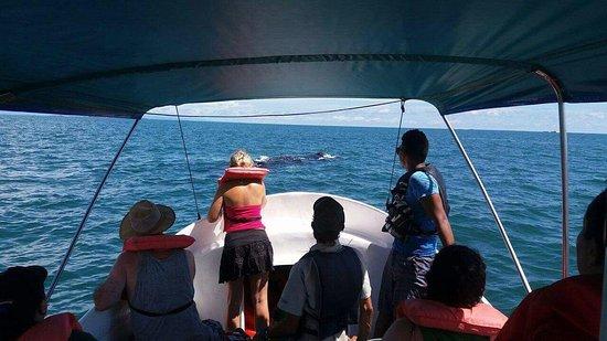 Playa Tortuga, Costa Rica: photo1.jpg
