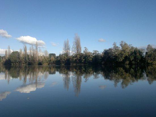 Ciudad La Union, Chili: Vista de un dia Bonito en Trumao