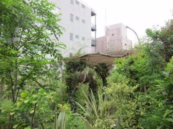 Hanano Rakuen Garden: 屋上庭園