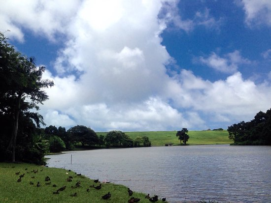 Kaneohe, ฮาวาย: photo3.jpg