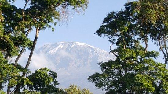 Kilimanjaro Region, Tanzanie : Mt. Kilimanjaro