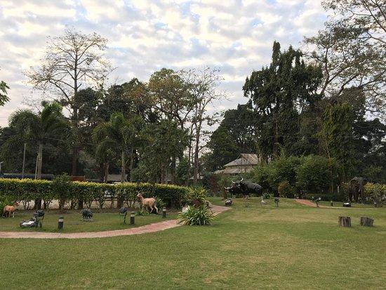 Stay only at Jaldapara Tourist Lodge, if you visit Jaldapara