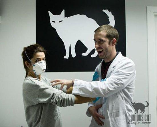 Curious Cat Escape Room Opiniones Leganes