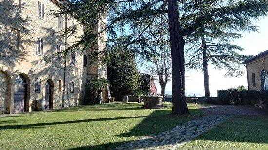 Montalcino, Włochy: IMG_20161209_132424_large.jpg