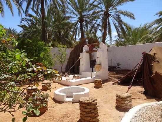 Jardin photo de maison d 39 hote akham ghardaia tripadvisor for Jardin 2000 tunisie