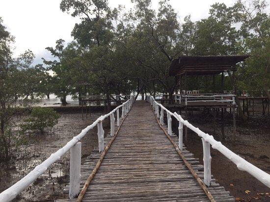 Ko Sarai, Tajlandia: ทางเดินชมธรรมชาติที่อยู่หน้ารีสอร์ทชุมชนบากันใหญ่