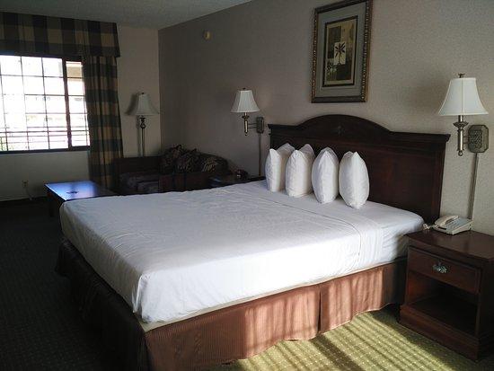 Studio City Court Yard Hotel: Camera king suite