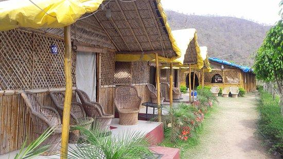 Vatika The Luxuary Camp